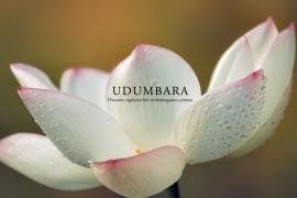 Dvasinio ugdymo ir sveikatingumo centras UDUMBARA