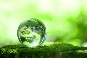 zeme_gyvoji_planeta