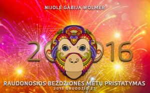 Nijolė Gabija Wolmer - 2016 METU PRISTATYMAS