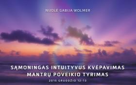 Nijolė Gabija Wolmer. Sąmoningas intuityvus kvėpavimas. Mantrų poveikio tyrimas.